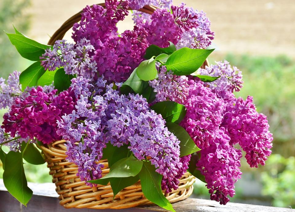 DIY bukiet świeżych kwiatów zrób to sam krok po kroku