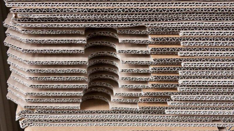 Jaką rolę w automatycznym pakowaniu żywności pełnią kartoniarki?